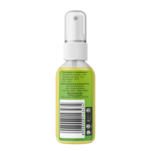 Buy Greenbrrew - Surface Cleanser Spray - 60ml Online