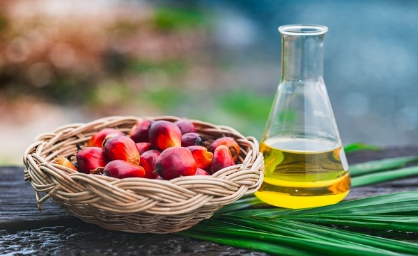 palm-oil-best-cooking-oil