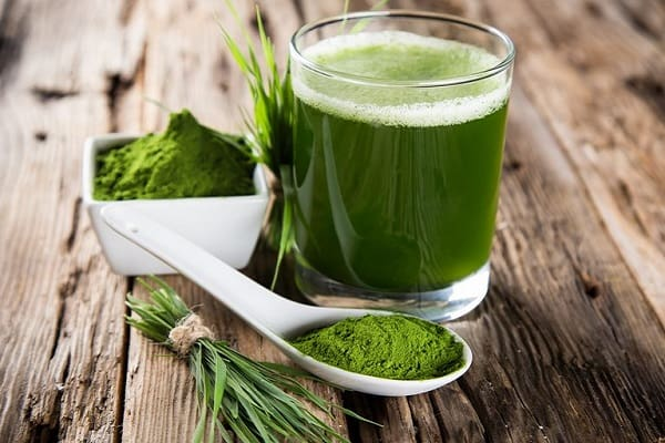 Wheatgrass: Health Benefits, Nutritional Value & Side Effects