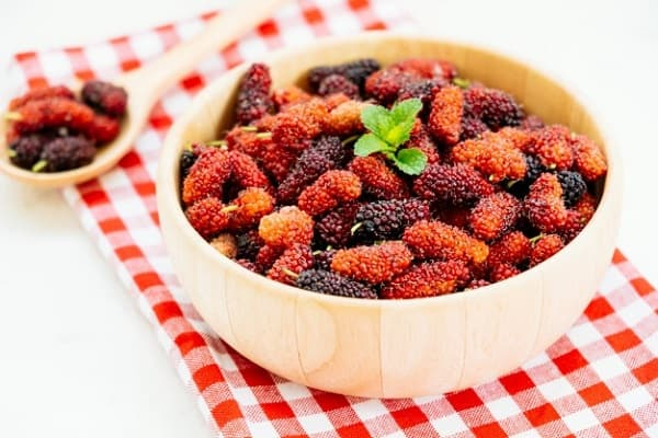 mulberry variety of berry
