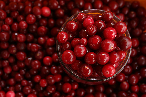 dried cranberries benefits