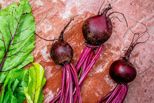 Beetroot nutrition