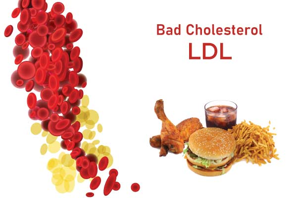 what is bad cholesterol